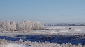 Distant landscape panorama with birch trees, hills, wires and road stock video footage