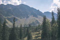 Distant mountain cores in slovakia Tatra mountain trails - vintage retro film look. Distant mountain cores in mist in slovakia Tatra mountain trails in clear aun stock images