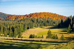 Distant mountain in fall colors. Beautiful autumn landscape. distant mountain in fall colors. beautiful sunny weather stock photo