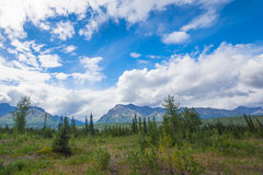 Distant Mountains and Arctic Meadow Royalty Free Stock Images