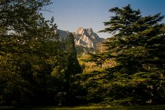Distant Rocky Peak from Vorontsov Palace Park in Crimea. Distant rocky mountain peak surrounded by green forest under sunlight from Vorontsov palace spring park royalty free stock images