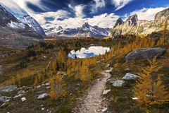 Mountain Landscape Yoho National Park Canadian Rockies. Distant Snowy Mountain Tops and Scenic Landscape View on Great Hiking Trail in Opabin Plateau above Lake Stock Images