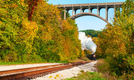 Distant Steam Train Stock Image