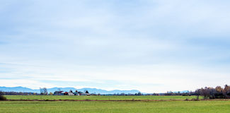 Distant Vermont farm Stock Photography