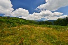 Distant view of the  Curcubăta Mare peak, Apuseni Mountains, Bihor, Romania Stock Images