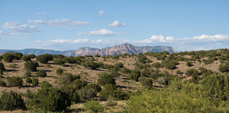 Distant view of the red rocks of Sedona Royalty Free Stock Photo
