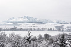 Distant view on Slovakian side of High Tatra mountains covered w Royalty Free Stock Images