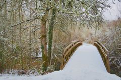 Angular View of Snow Covered Wooden Bridge in Wooded Area, Daytime. Distant View of Snow Covered Wooden Bridge in Wooded Area, Daytime stock image