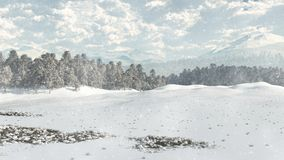 Distant Winter Woodland in Snow Stock Image
