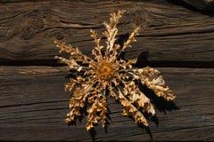 Distel droge bloemen over de deur van een chalet royalty-vrije stock afbeeldingen