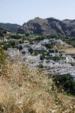 Disteln und weißes Dorf in Sierra Nevada, Süd-Spanien, Europ stockfoto