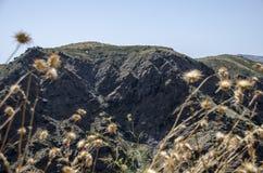 Disteln und weißes Dorf in Sierra Nevada, Süd-Spanien, Europ lizenzfreies stockbild