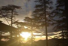Distillation of beautiful sun rays royalty free stock image
