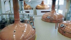 Distilleerderijzaal met koper het brouwen reservoirs wordt gevuld dat stock video