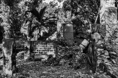 Distilleria antica della cannella fotografia stock