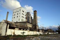 Distilleria del rum fotografia stock libera da diritti
