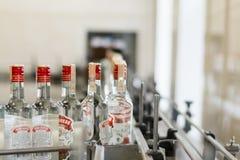 Distilleria di Brest Il trasportatore con le bottiglie di vodka immagine stock libera da diritti