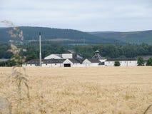 Distillerie Images libres de droits