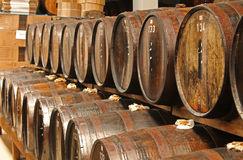Oak barrels stock photography