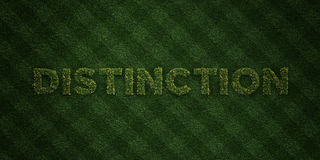 DISTINCTION - fresh Grass letters with flowers and dandelions - 3D rendered royalty free stock image Stock Photography