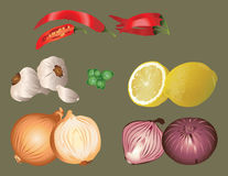 Distinctive flavors. It is illustration of aromatic food ingredients, vegetables, fruit and herb Stock Photos