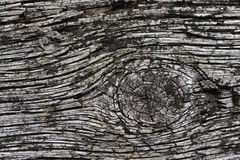 Distinctive woodgrain Royalty Free Stock Images
