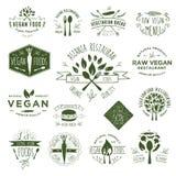 Distintivi del vegano del disegno della mano Fotografie Stock