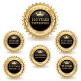 Distintivi di esperienza dell'oro Immagini Stock