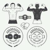 Distintivi di logo di arti marziali e di pugilato, etichette ed elementi di progettazione illustrazione vettoriale