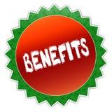 Distintivo del girasole con il testo dei BENEFICI Fotografia Stock Libera da Diritti