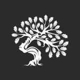 Distintivo enorme e sacro di logo della siluetta della quercia isolato su fondo scuro royalty illustrazione gratis