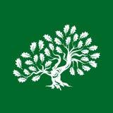 Distintivo enorme e sacro di logo della siluetta della quercia isolato su fondo verde royalty illustrazione gratis