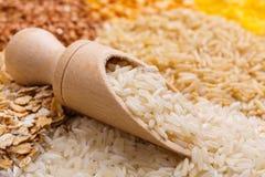 Distorca con riso su un fondo dei cereali diversi Immagine Stock