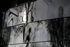 Distorted Reflections Stock Photography