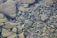 Distorted view of slit covered rocks in water Royalty Free Stock Photography