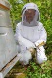 Distracción de la abeja usando fumador Foto de archivo libre de regalías