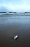 Distress message in a bottle on the deserted beach at dawn. Bottle found on the beach with a message inside Royalty Free Stock Photography
