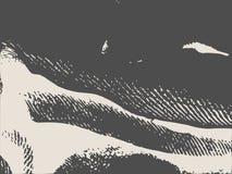 Distress Overlay Background. Grunge Fiber Texture. Distress Overlay Background. Retro Empty Design Element. Grunge Fiber Texture. Grainy Texture of Weaving Royalty Free Stock Photography
