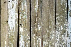 Distress Wooden Planks Stock Photo