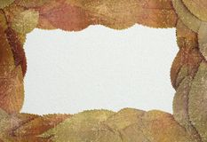 Distressed autumn backdrop with place for text Stock Image