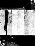 Distressed background 2. Distressed background of floral elements vector illustration