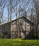 An  old barn among the trees. A distressed barn in a rural area among the trees. Good barn wood Stock Images