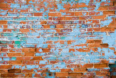 Distressed brick wall royalty free stock images
