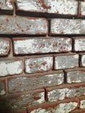 Distressed brick wall Royalty Free Stock Photo