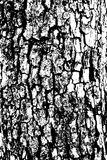 Distressed halftone grunge black and white vector texture -old wood bark texture background with cracks for creation Stock Photos
