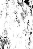 Distressed halftone grunge black and white vector texture -old wood bark texture background with cracks for creation Stock Images