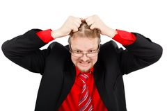 Distressed man pulling his hair. Angry distressed business man pulling his hair Stock Image