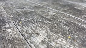 Distressed natural wood surfaces Stock Photos