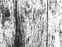 Distressed overlay wooden bark texture Royalty Free Stock Photography