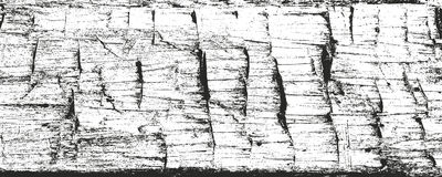 Distressed overlay wooden bark texture Royalty Free Stock Photos